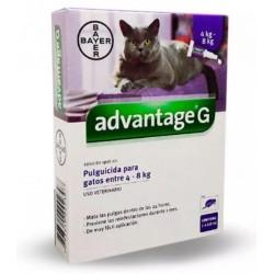 Advantage Gato