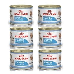 Royal Canin Alimento Húmedo para Perro Starter Mother & Babydog  Lata 195gr x 6u
