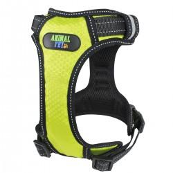 Arnes Confort - Medium - Verde Neon