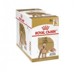 Royal Canin Alimento Húmedo para Perro Caniche  Pouch 85gr x 12u