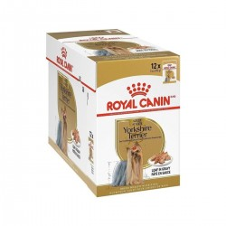 Royal Canin Alimento Húmedo para Perro Yorkshire Terrier  Pouch 85gr x 12u