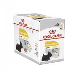 Royal Canin Alimento Húmedo para Perro Dermacomfort  Pouch 85gr x 12u