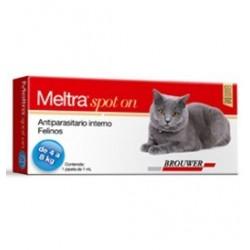 Meltra Spot On
