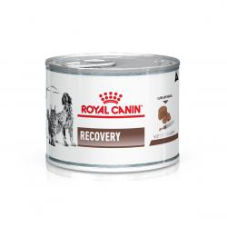 Royal Canin Alimento Húmedo para Gato y Perro Recovery Feline & Canine  195 gr