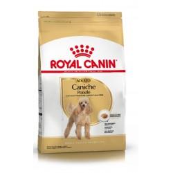 Royal Canin Alimento Seco para Perro Caniche Adult