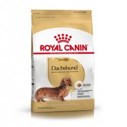 Royal Canin Alimento Seco para Perro Dachshund Adult  3 kg